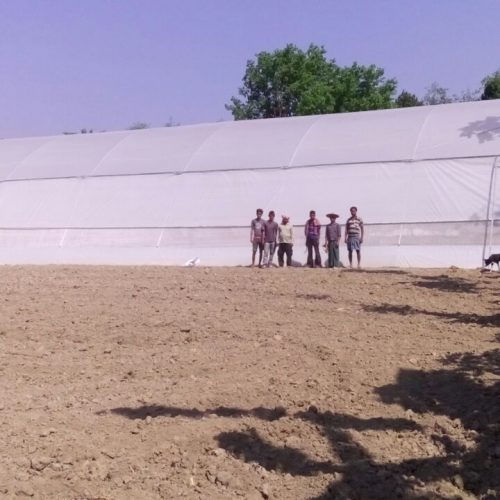 Greenhouse for farmer Cooperative with Internal shading and Irrigation